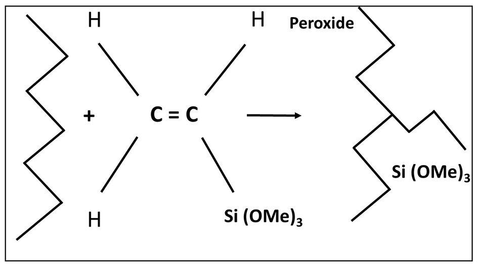 Vinylsilane is attached to the polymer backbone through peroxide grafting.